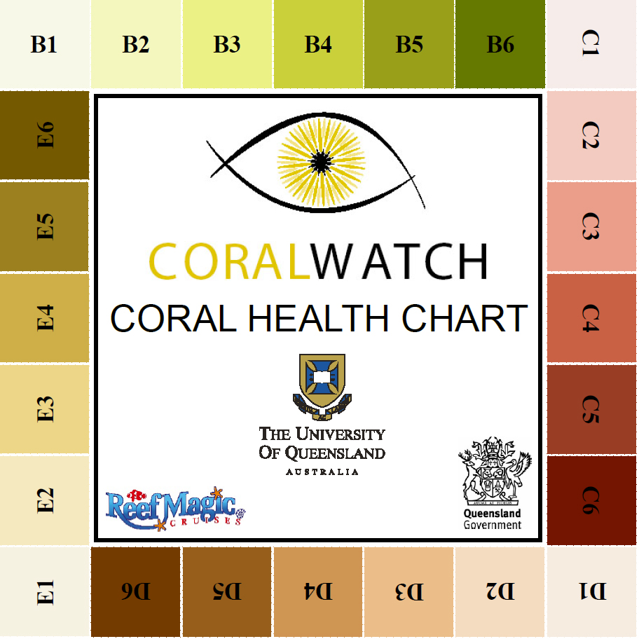 CoralWatch – Citizen Science on the Reef