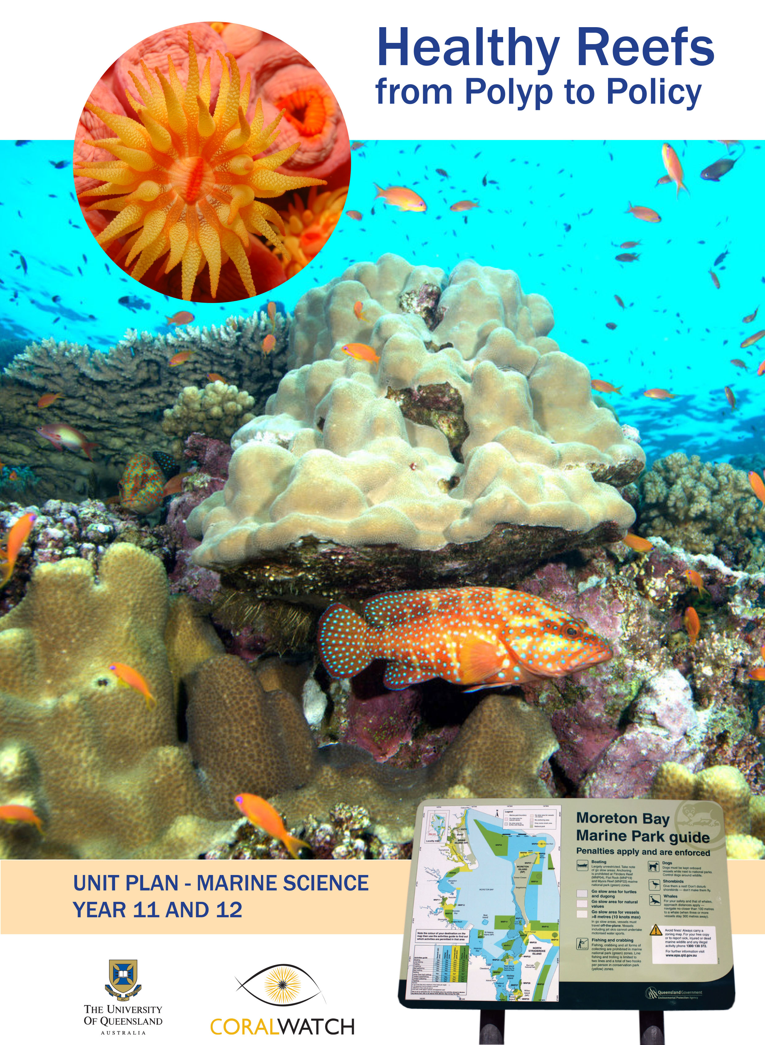 Curriculum Linked Materials – CoralWatch