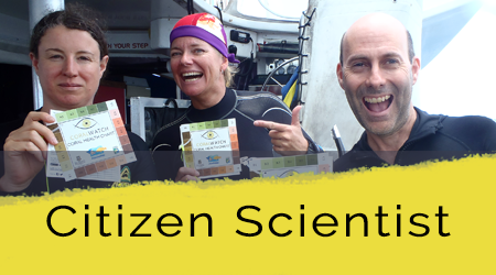 citizen scientist home