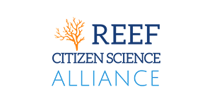 reef citizen alliance long