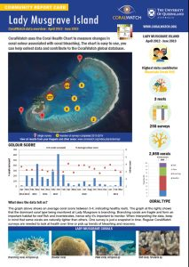 Musgrave Island report card 2019