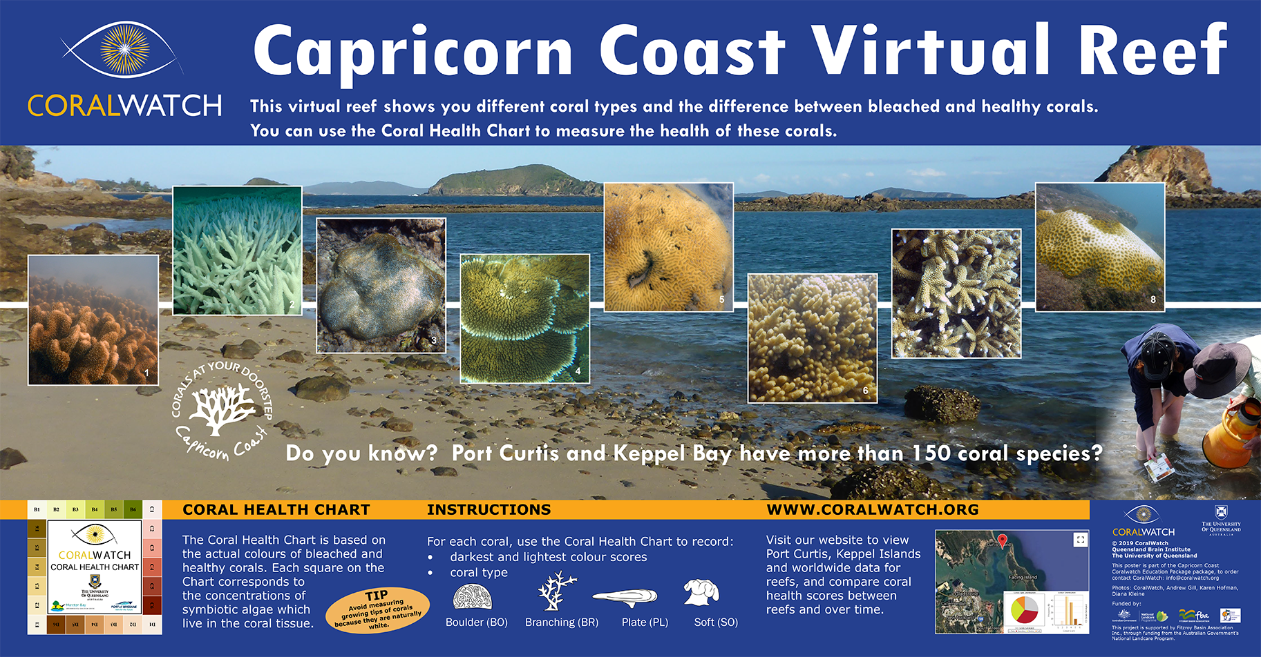 2019_small_virtual-transect-Capricorn-Coast-690-1