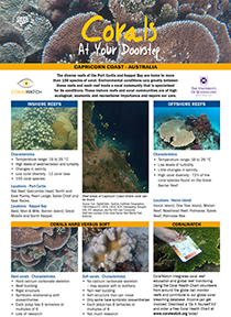 Central-Qld-coral-guide_2019-1