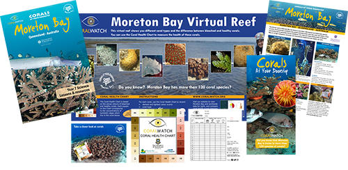 Moreton-Bay-education-package
