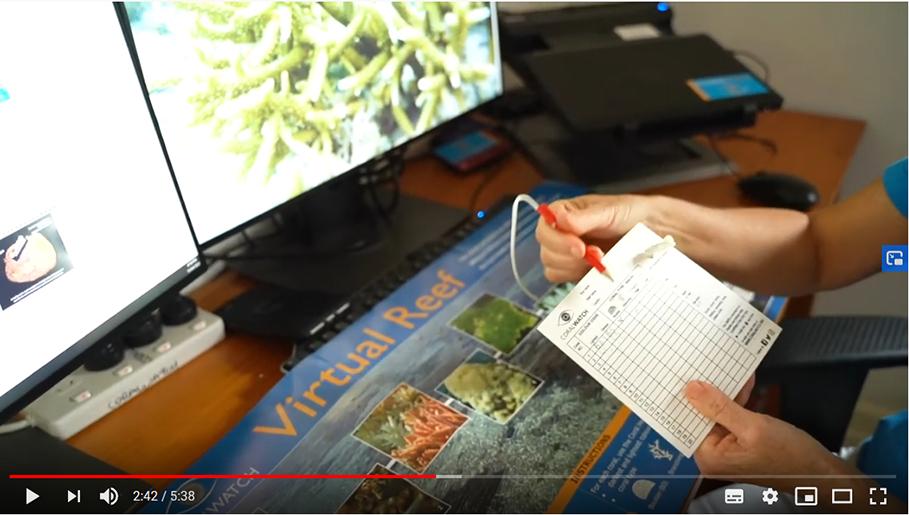 instructional-video2