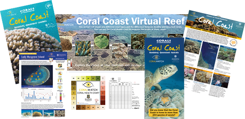 Coral-coast-package