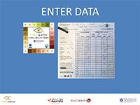 Enter data instructions